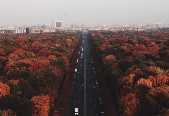 A road running through a forest stretches into a foggy cityscape horizon.