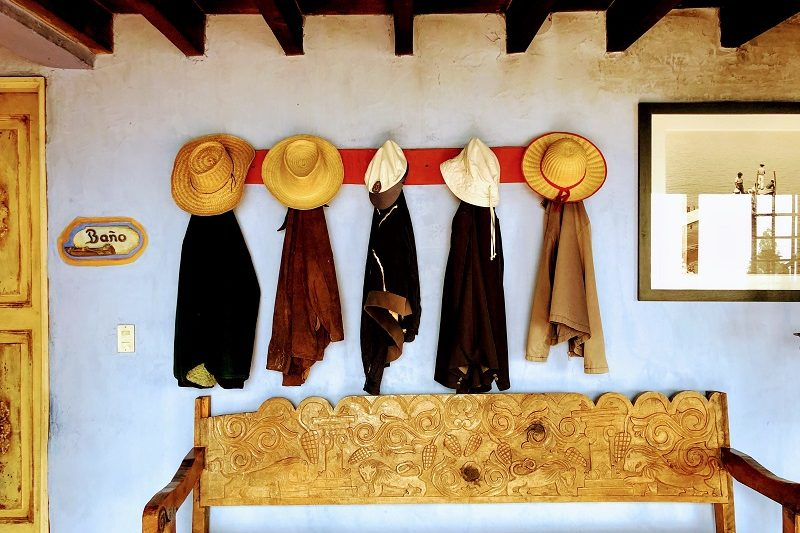 5 hats hang on a wall above a wooden bench.